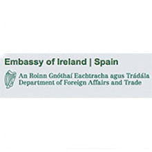 embajada de irlanda