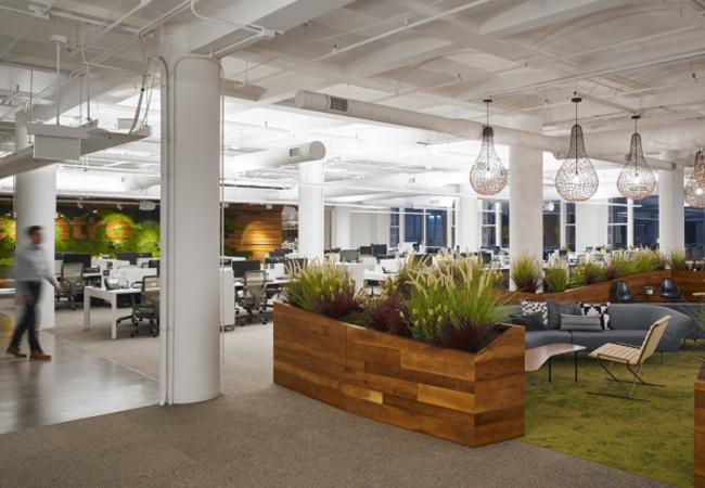 Distribuci n de oficinas ideas redistribuci n y reforma for Areas de una oficina
