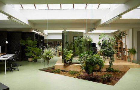 7 características de las oficinas modernas