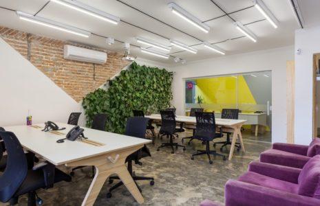 Jardines verticales para oficinas en Madrid
